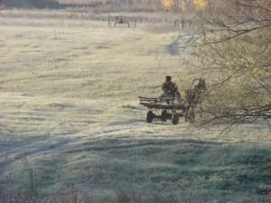 крестьянин на телеге едет на лошади