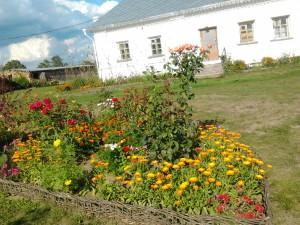 фото дом цветы